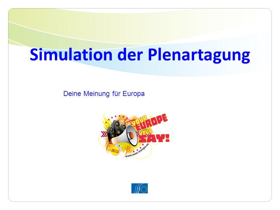 Simulation der Plenartagung Deine Meinung für Europa