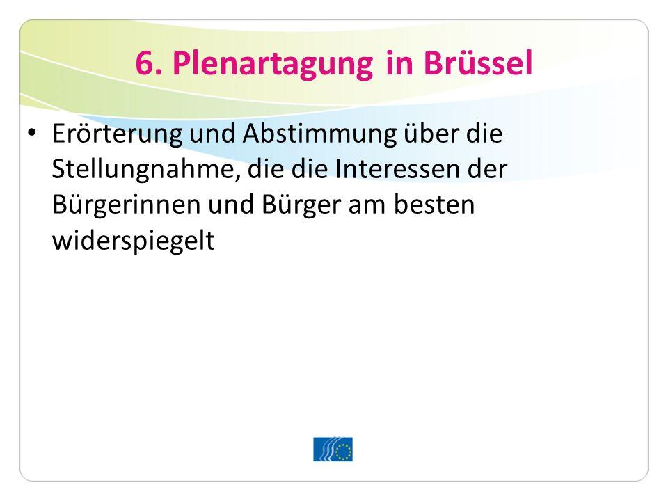 6. Plenartagung in Brüssel Erörterung und Abstimmung über die Stellungnahme, die die Interessen der Bürgerinnen und Bürger am besten widerspiegelt
