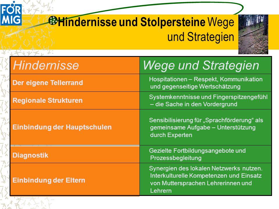 Hindernisse und Stolpersteine Wege und Strategien Synergien des lokalen Netzwerks nutzen. Interkulturelle Kompetenzen und Einsatz von Muttersprachen L