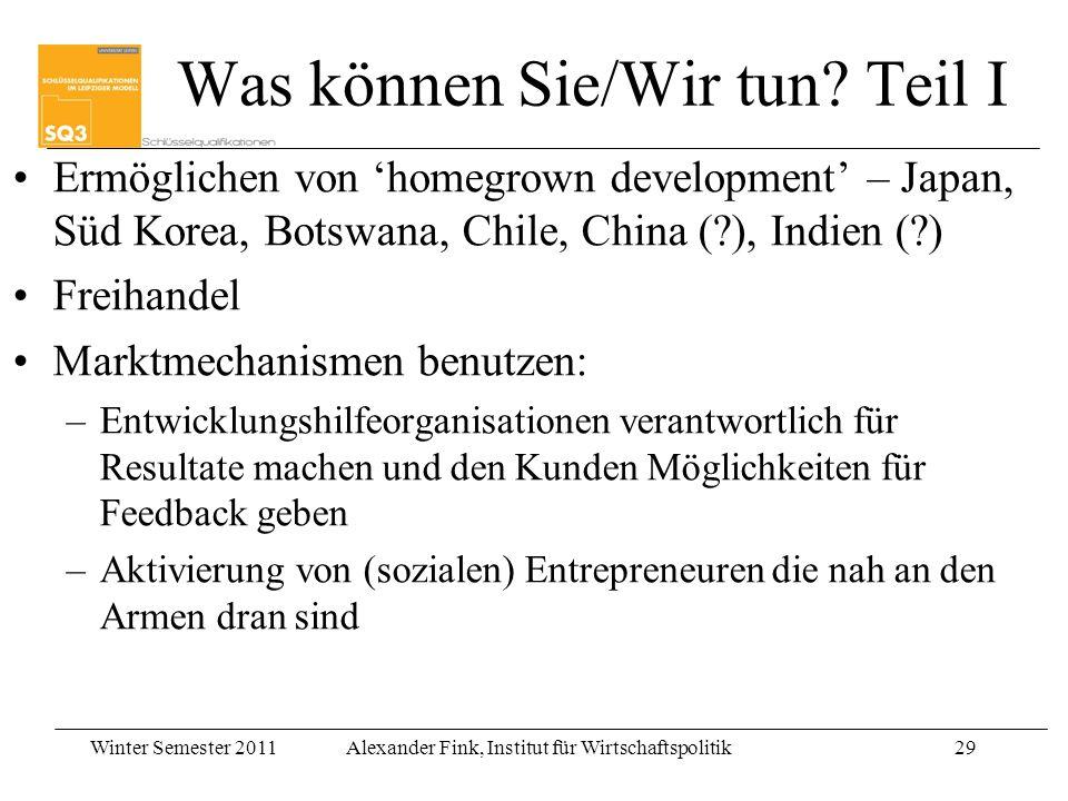 Winter Semester 2011Alexander Fink, Institut für Wirtschaftspolitik29 Was können Sie/Wir tun? Teil I Ermöglichen von homegrown development – Japan, Sü