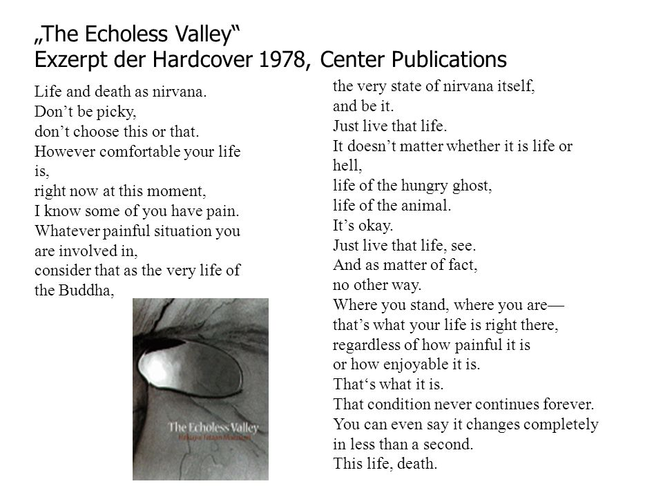 The Echoless Valley Exzerpt der Hardcover 1978, Center Publications Life and death as nirvana.