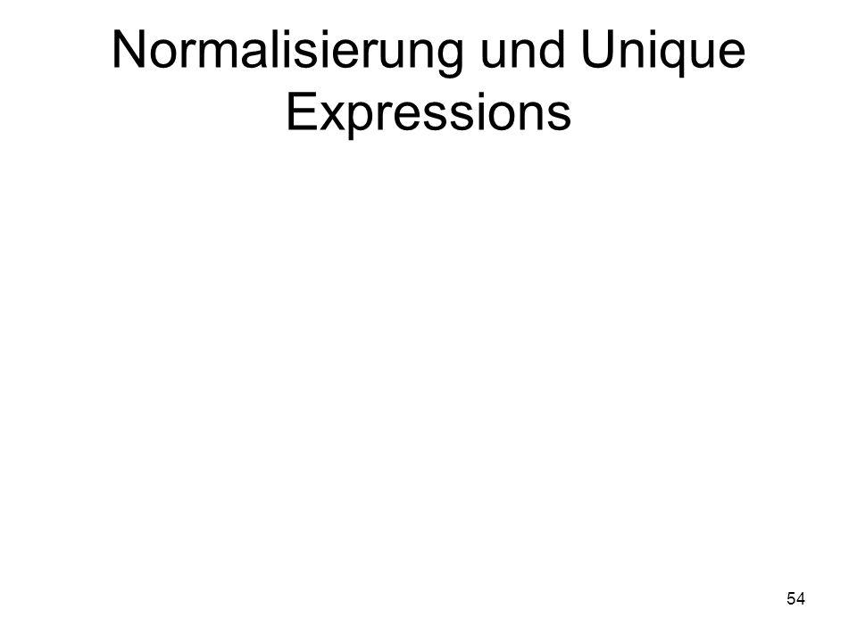 54 Normalisierung und Unique Expressions