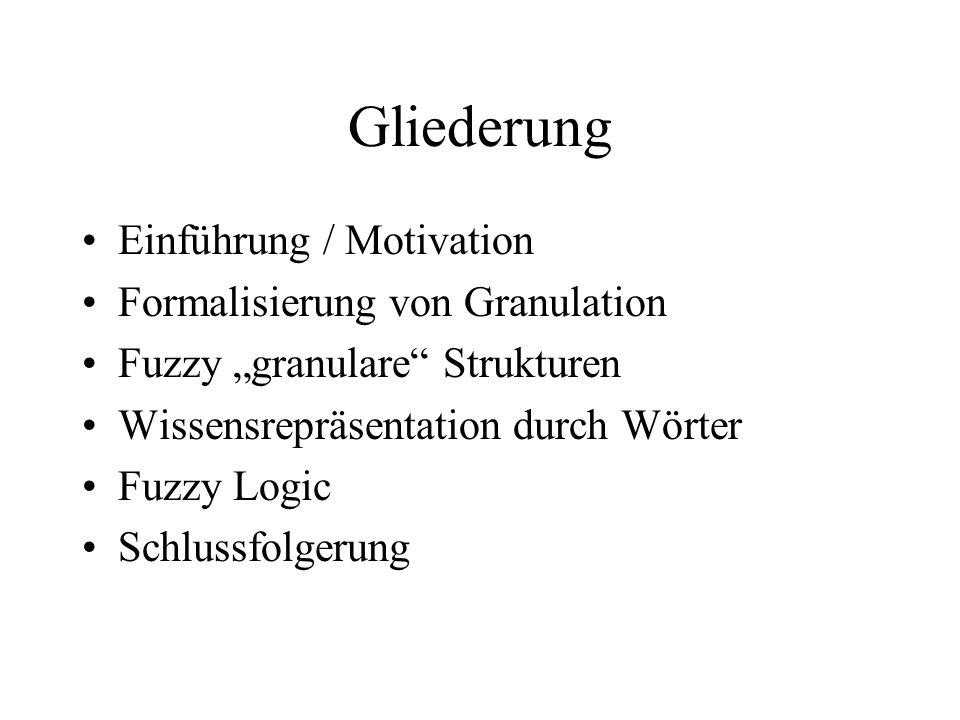 Gliederung Einführung / Motivation Formalisierung von Granulation Fuzzy granulare Strukturen Wissensrepräsentation durch Wörter Fuzzy Logic Schlussfolgerung