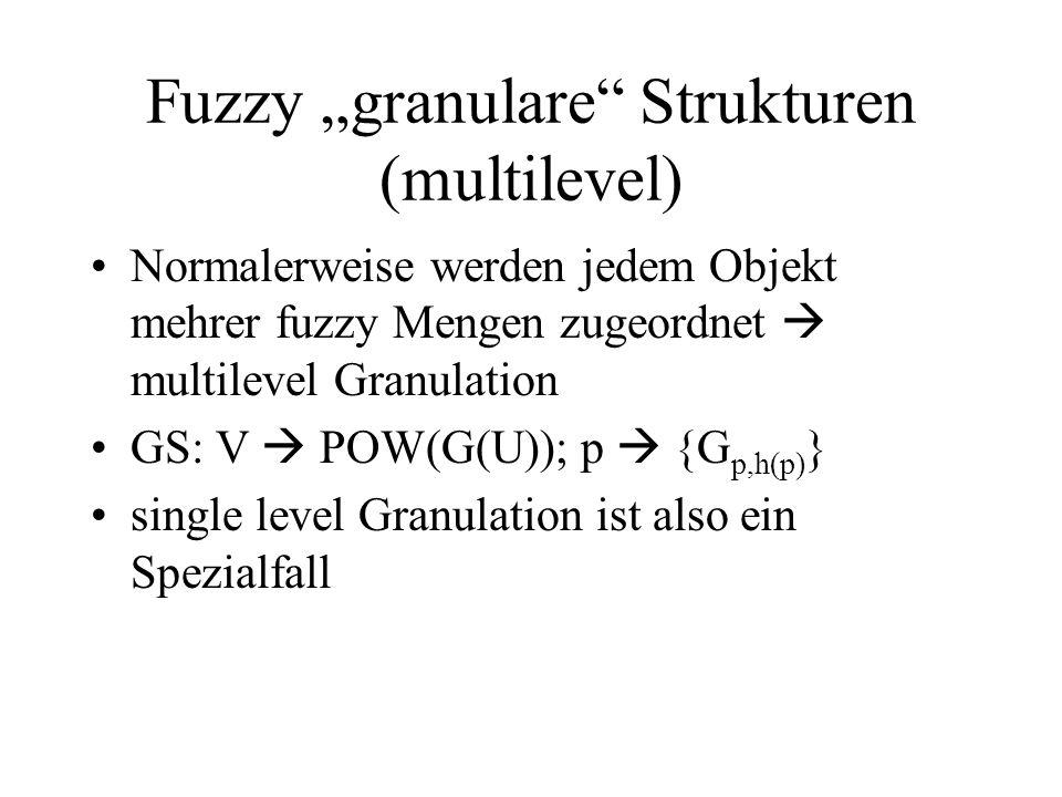 Fuzzy granulare Strukturen (multilevel) Normalerweise werden jedem Objekt mehrer fuzzy Mengen zugeordnet multilevel Granulation GS: V POW(G(U)); p {G p,h(p) } single level Granulation ist also ein Spezialfall