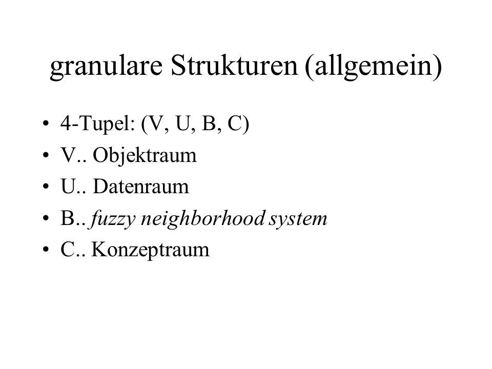 granulare Strukturen (allgemein) 4-Tupel: (V, U, B, C) V..