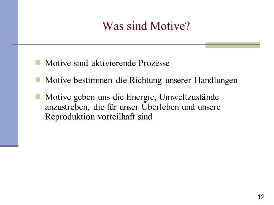 12 Was sind Motive? Motive sind aktivierende Prozesse Motive bestimmen die Richtung unserer Handlungen Motive geben uns die Energie, Umweltzustände an