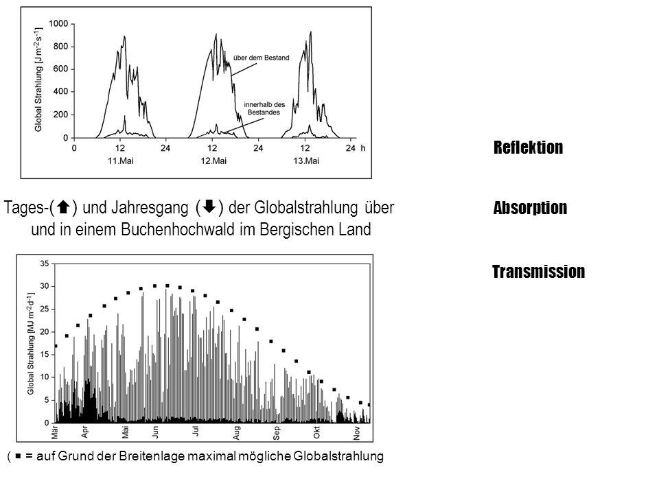 Tages- ( ) und Jahresgang ( ) der Globalstrahlung über und in einem Buchenhochwald im Bergischen Land ( = auf Grund der Breitenlage maximal mögliche G