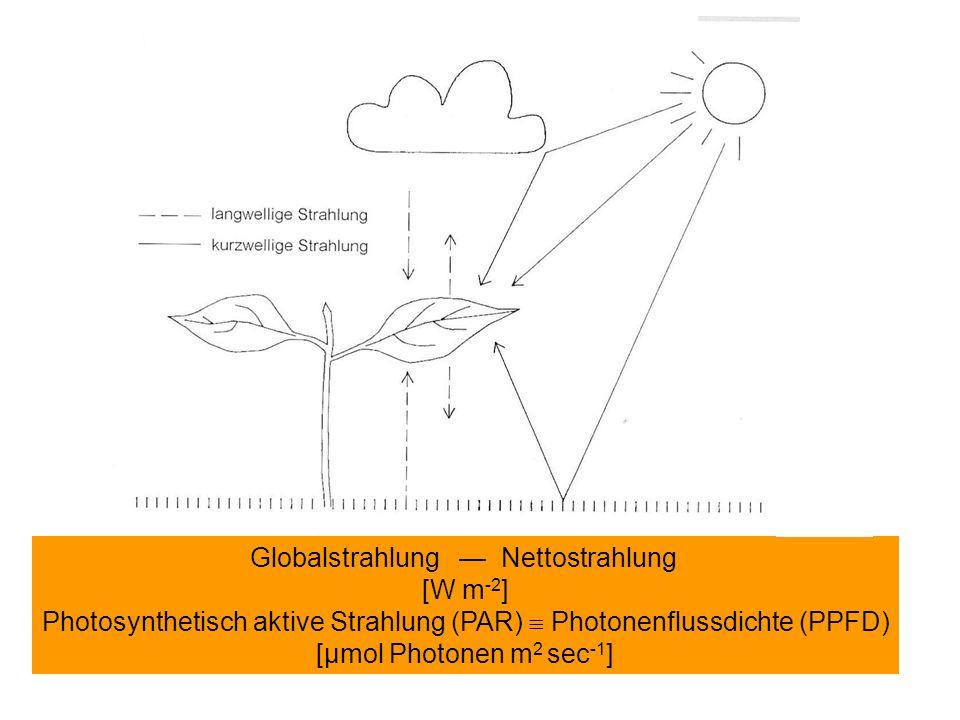 Tages- ( ) und Jahresgang ( ) der Globalstrahlung über und in einem Buchenhochwald im Bergischen Land ( = auf Grund der Breitenlage maximal mögliche Globalstrahlung) Reflektion Absorption Transmission