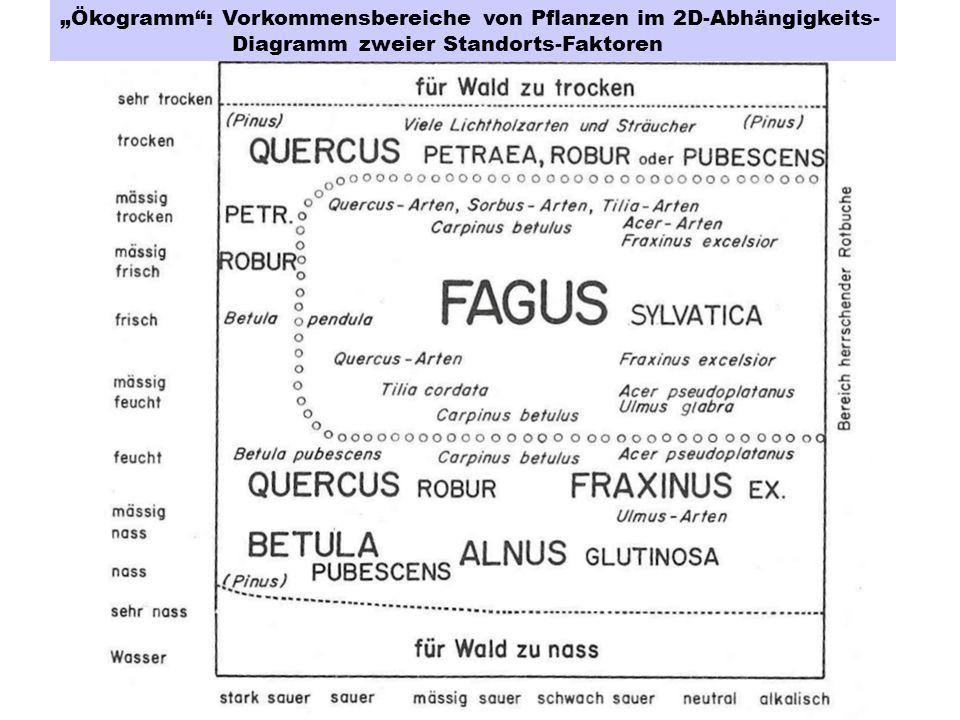 Ökogramm: Vorkommensbereiche von Pflanzen im 2D-Abhängigkeits- Diagramm zweier Standorts-Faktoren