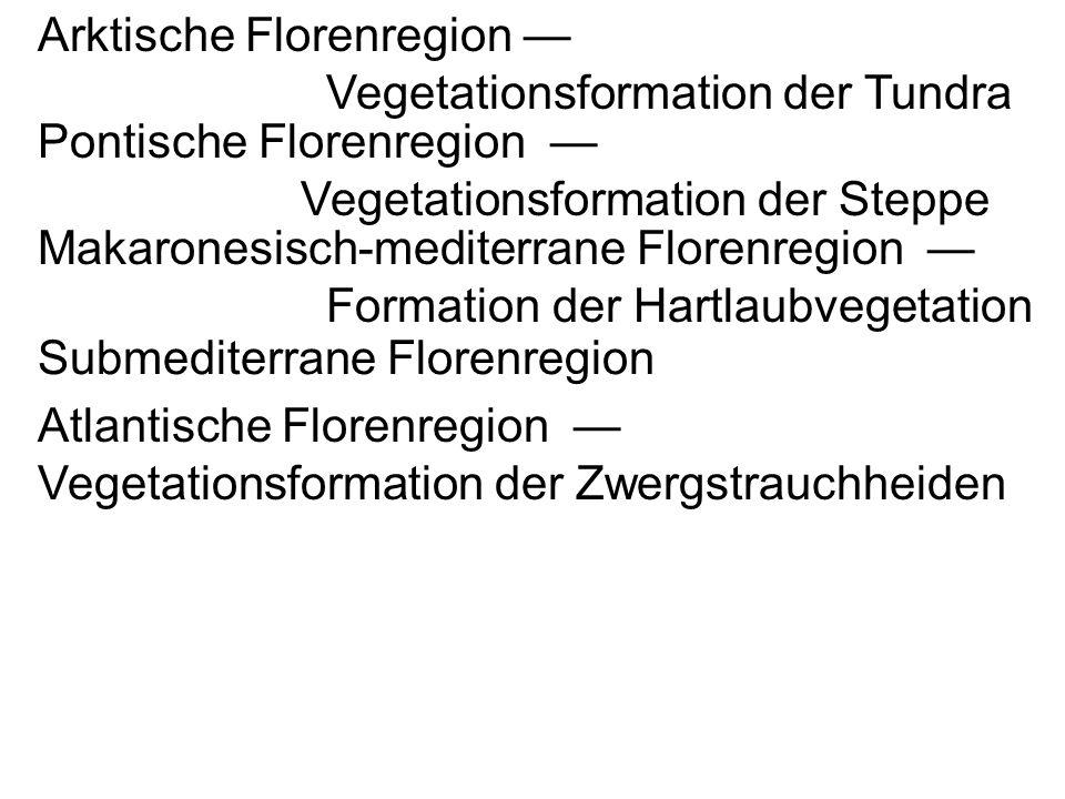Arktische Florenregion Vegetationsformation der Tundra Pontische Florenregion Vegetationsformation der Steppe Makaronesisch-mediterrane Florenregion Formation der Hartlaubvegetation Submediterrane Florenregion Atlantische Florenregion Vegetationsformation der Zwergstrauchheiden