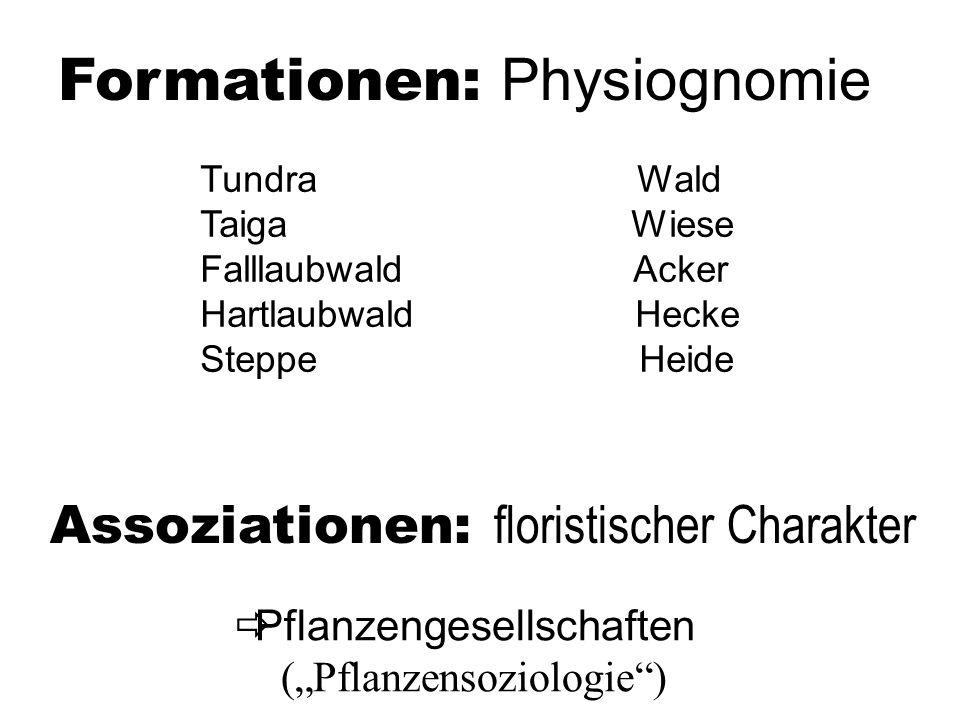 Formationen: Physiognomie Tundra Wald Taiga Wiese Falllaubwald Acker Hartlaubwald Hecke Steppe Heide Assoziationen: floristischer Charakter Pflanzengesellschaften (Pflanzensoziologie)