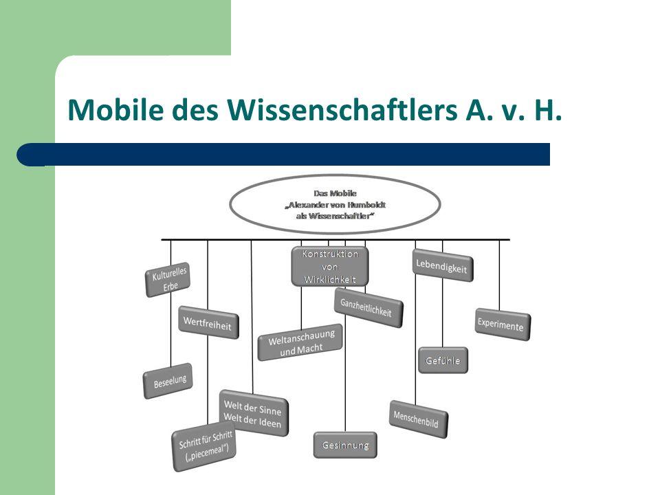 Mobile des Wissenschaftlers A. v. H.
