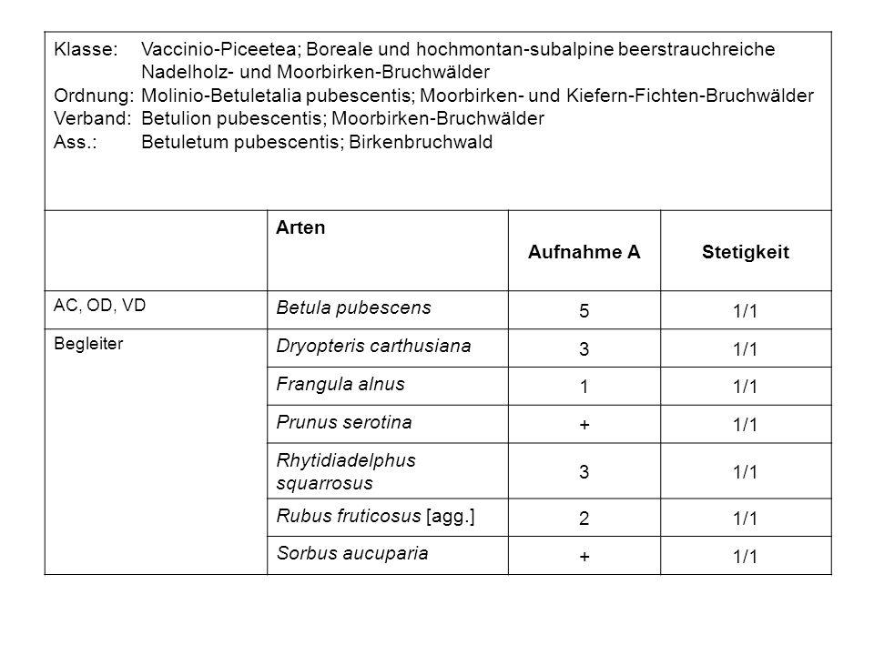 Klasse:Vaccinio-Piceetea; Boreale und hochmontan-subalpine beerstrauchreiche Nadelholz- und Moorbirken-Bruchwälder Ordnung:Molinio-Betuletalia pubesce