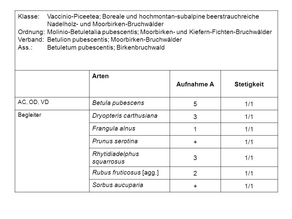 Betuletum pubescentis - Birkenbruchwald Brunzeler Dose