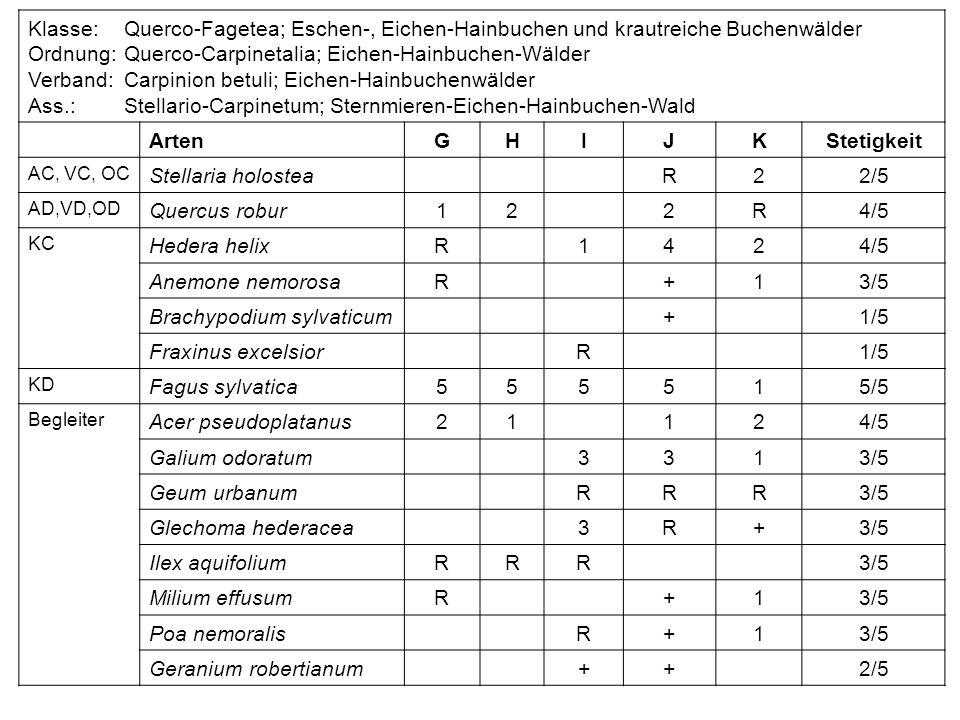 Klasse:Querco-Fagetea; Eschen-, Eichen-Hainbuchen und krautreiche Buchenwälder Ordnung:Querco-Carpinetalia; Eichen-Hainbuchen-Wälder Verband:Carpinion
