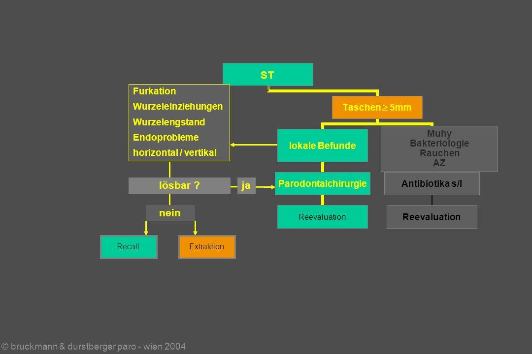 © bruckmann & durstberger paro - wien 2004 Muhy Bakteriologie Rauchen AZ RecallExtraktion Furkation Wurzeleinziehungen Wurzelengstand Endoprobleme horizontal / vertikal lösbar .