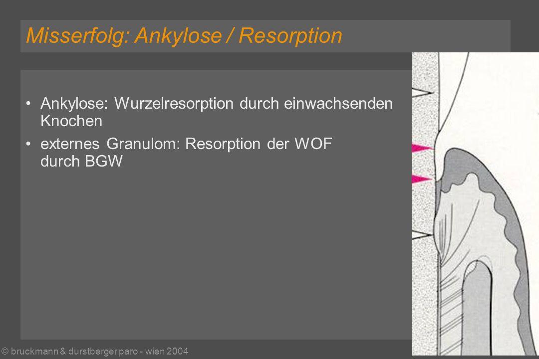 © bruckmann & durstberger paro - wien 2004 Misserfolg: Ankylose / Resorption Ankylose: Wurzelresorption durch einwachsenden Knochen externes Granulom: Resorption der WOF durch BGW