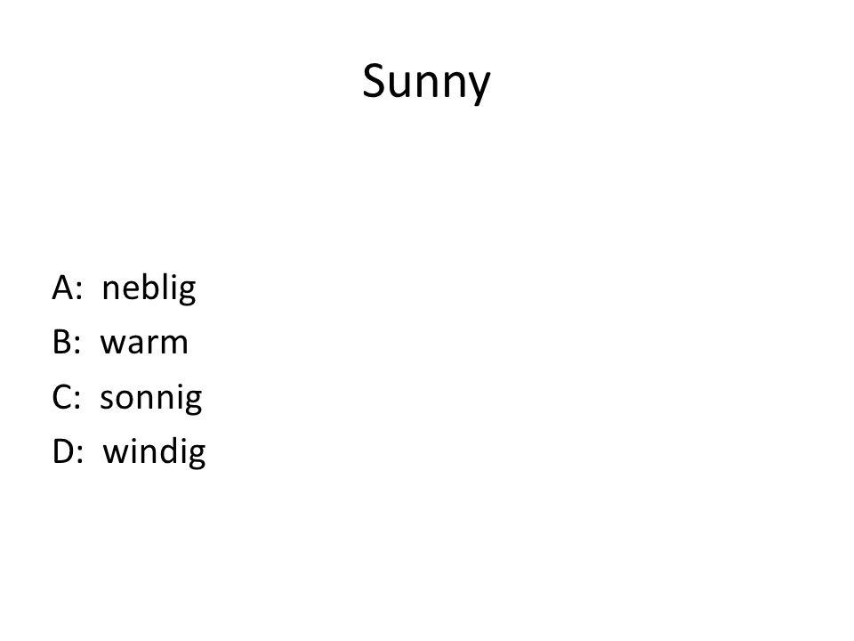 Sunny A: neblig B: warm C: sonnig D: windig