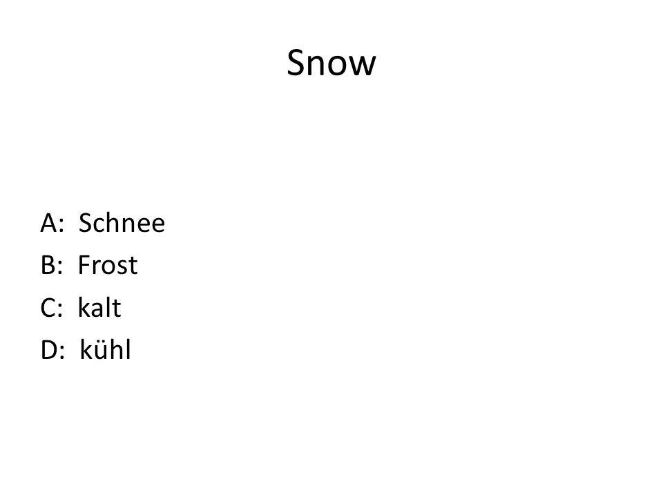 Snow A: Schnee B: Frost C: kalt D: kühl