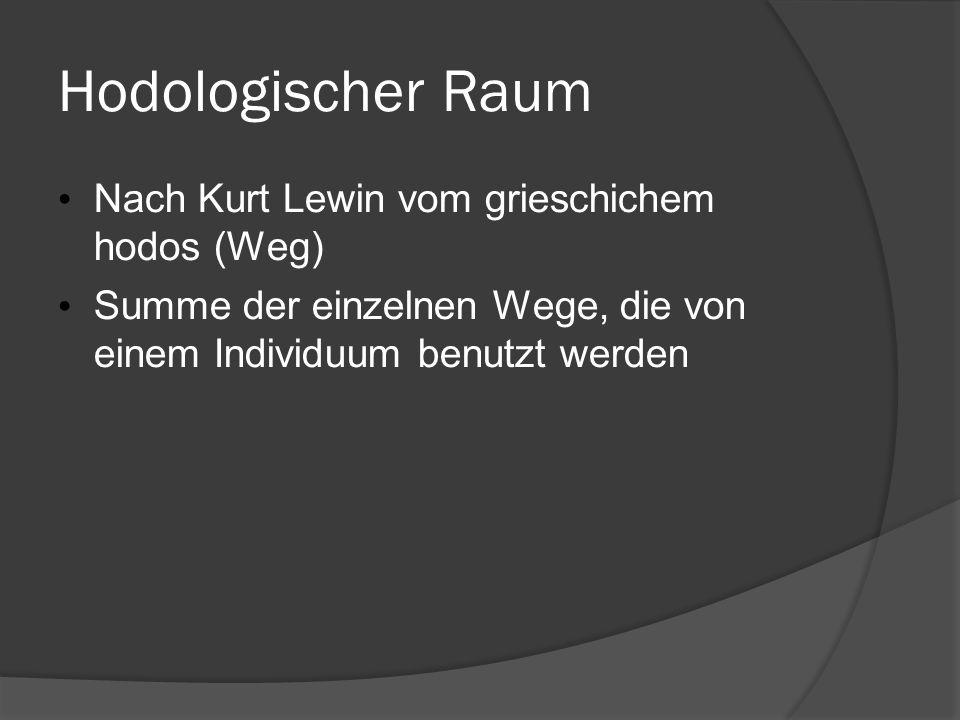 Hodologischer Raum Nach Kurt Lewin vom grieschichem hodos (Weg) Summe der einzelnen Wege, die von einem Individuum benutzt werden