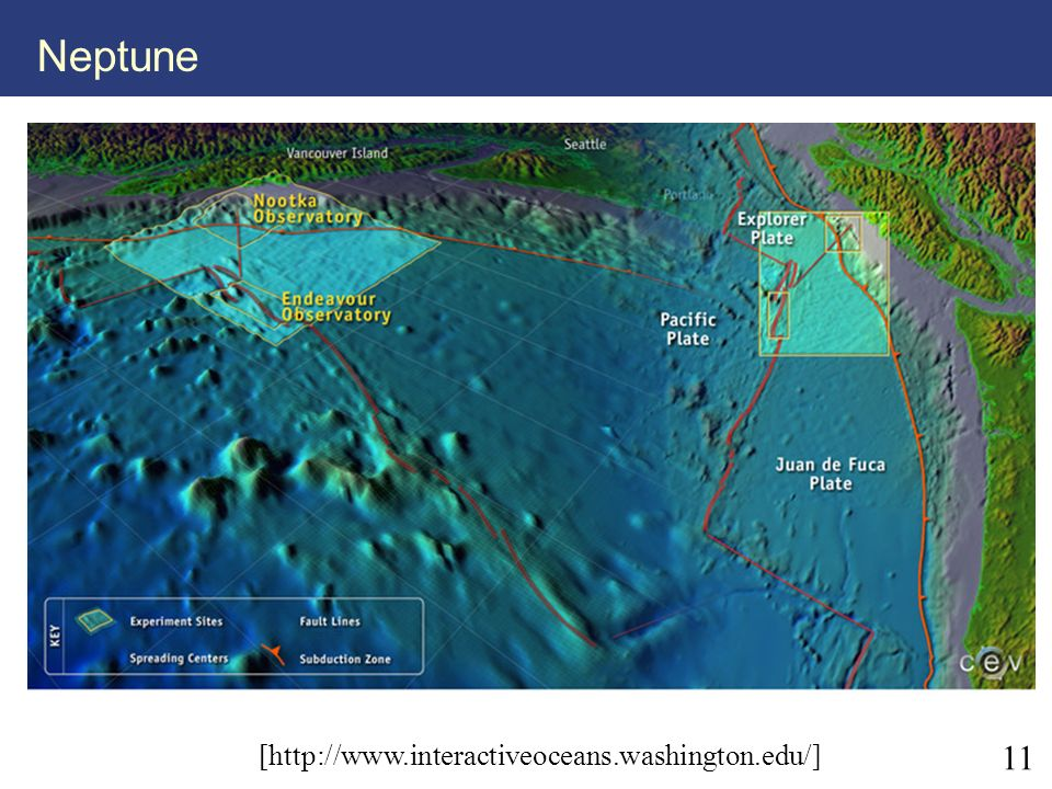 11 Neptune [http://www.interactiveoceans.washington.edu/]