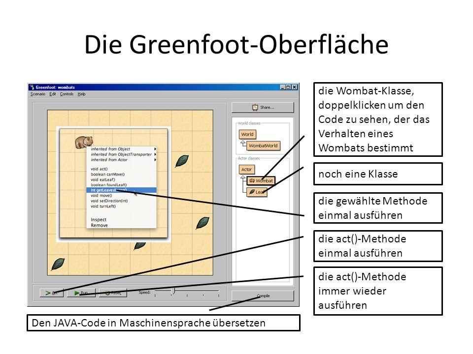Die Greenfoot-Oberfläche die gewählte Methode einmal ausführen die act()-Methode einmal ausführen die act()-Methode immer wieder ausführen die Wombat-