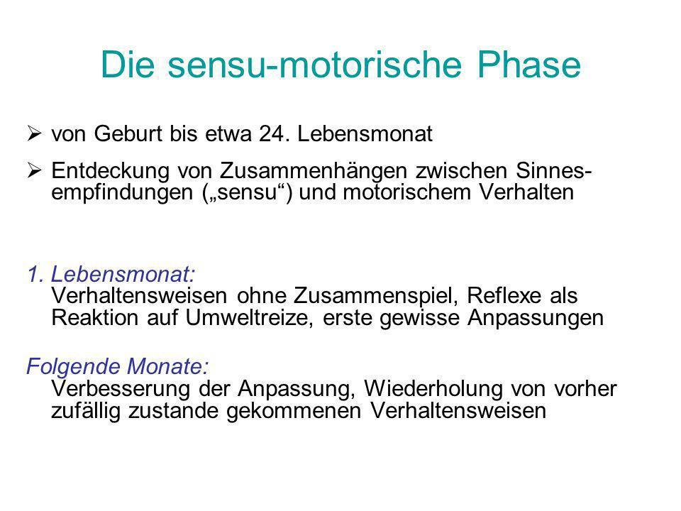 Die sensu-motorische Phase von Geburt bis etwa 24. Lebensmonat Entdeckung von Zusammenhängen zwischen Sinnes- empfindungen (sensu) und motorischem Ver