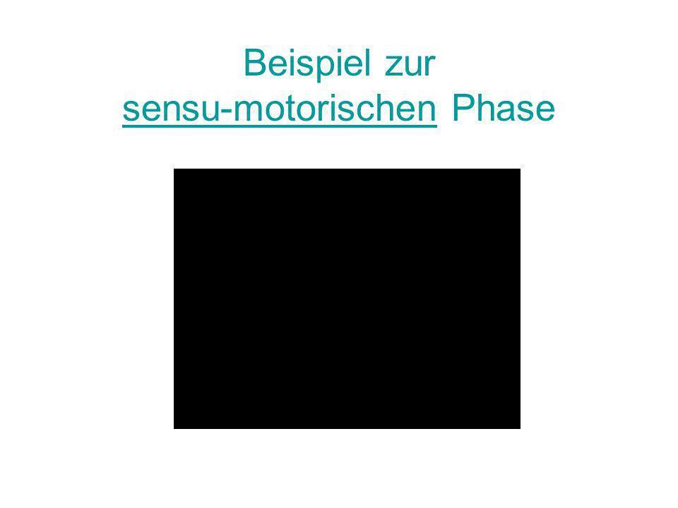 Beispiel zur sensu-motorischen Phase