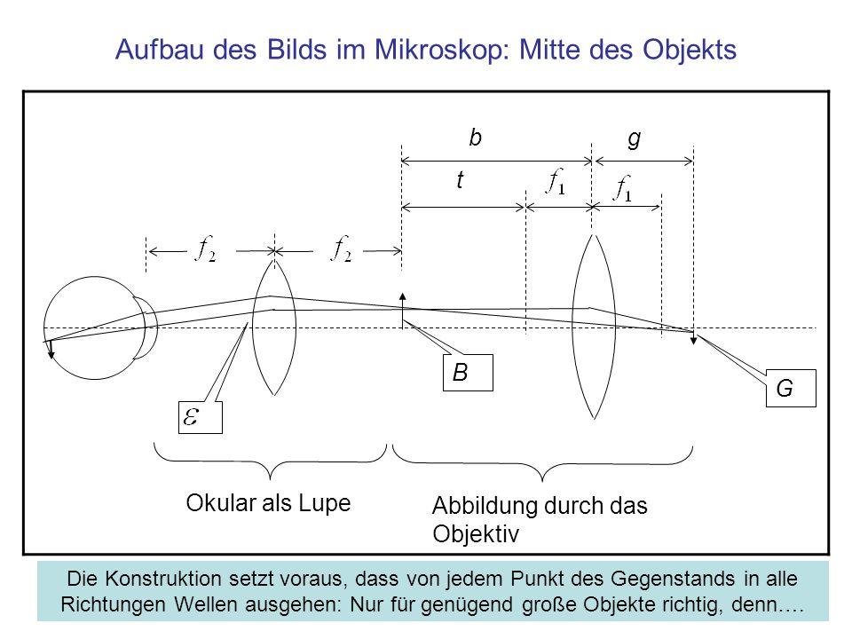 Aufbau des Bilds im Mikroskop: Mitte des Objekts B G Okular als Lupe t gb Abbildung durch das Objektiv Die Konstruktion setzt voraus, dass von jedem P