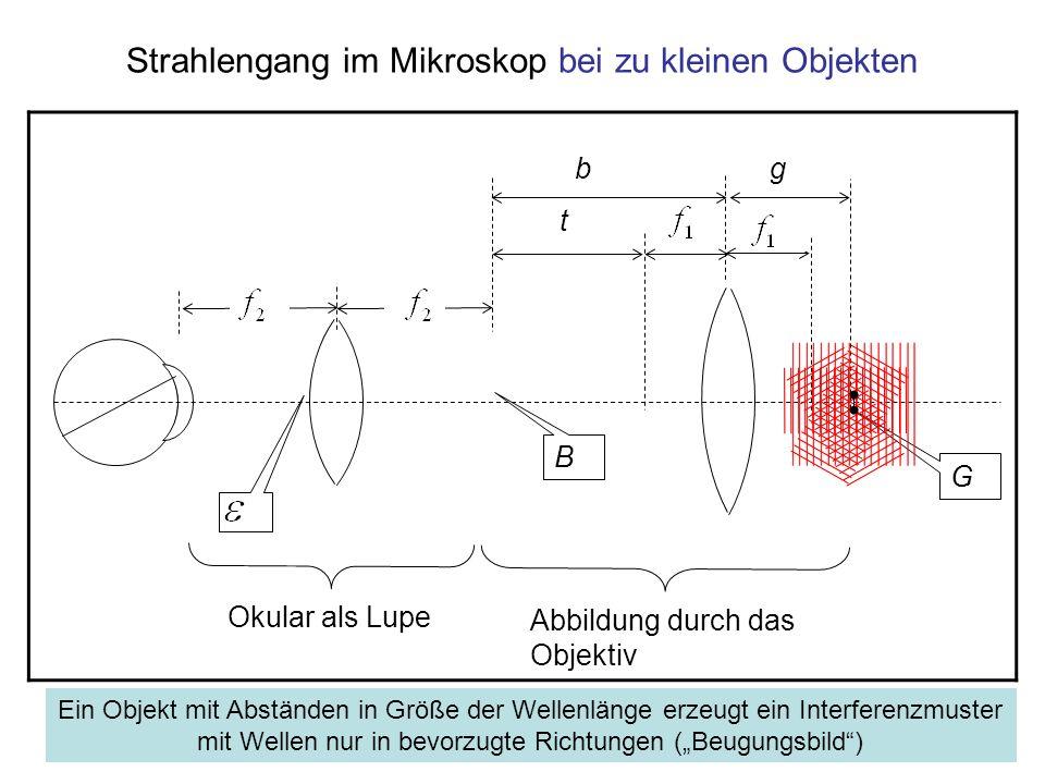 Strahlengang im Mikroskop bei zu kleinen Objekten B G Okular als Lupe t gb Abbildung durch das Objektiv Ein Objekt mit Abständen in Größe der Wellenlä