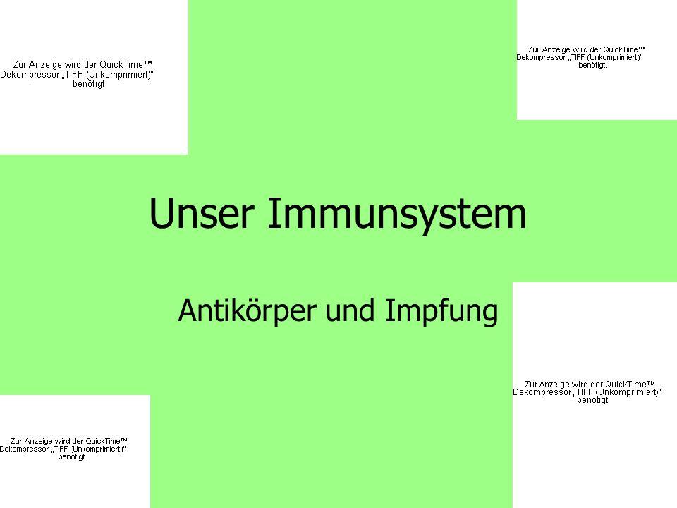 Mittwoch, 15.04.09LdL-Lektion von Laura Meier12 Impfung 1.Aktive Immunisierung 2.Passive Immunisierung
