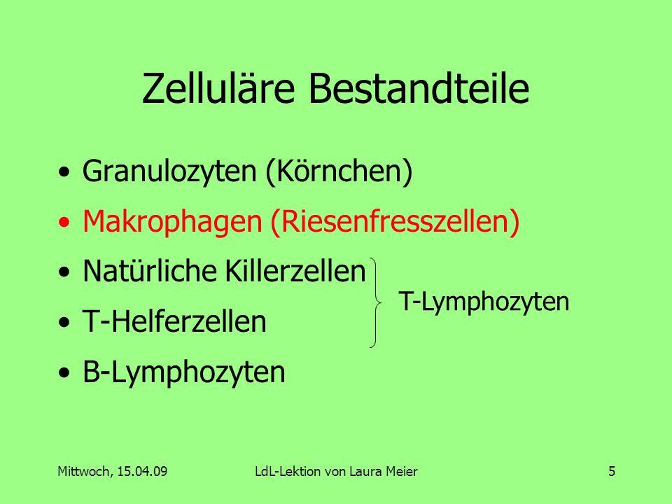 Mittwoch, 15.04.09LdL-Lektion von Laura Meier6 Bestandteile des Immunsystems 1.Mechanische und physiologische Barrieren 2.Zelluläre Bestandteile 3.Humorale Bestandteile