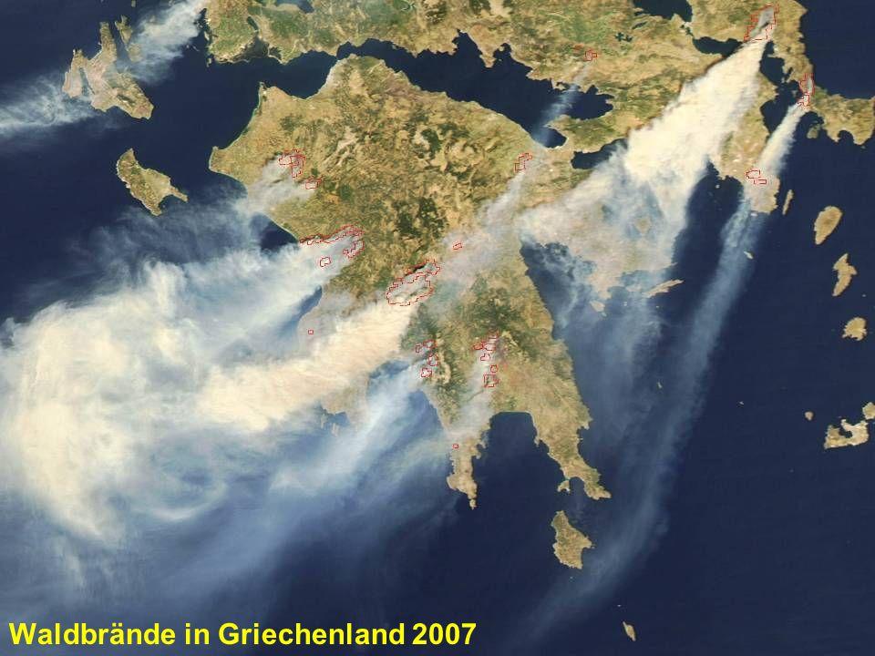 Waldbrände in Griechenland 2007