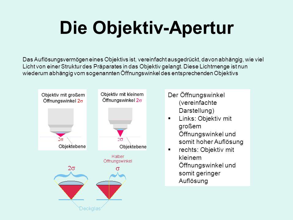Die Objektiv-Apertur Der Öffnungswinkel (vereinfachte Darstellung) Links: Objektiv mit großem Öffnungswinkel und somit hoher Auflösung rechts: Objekti