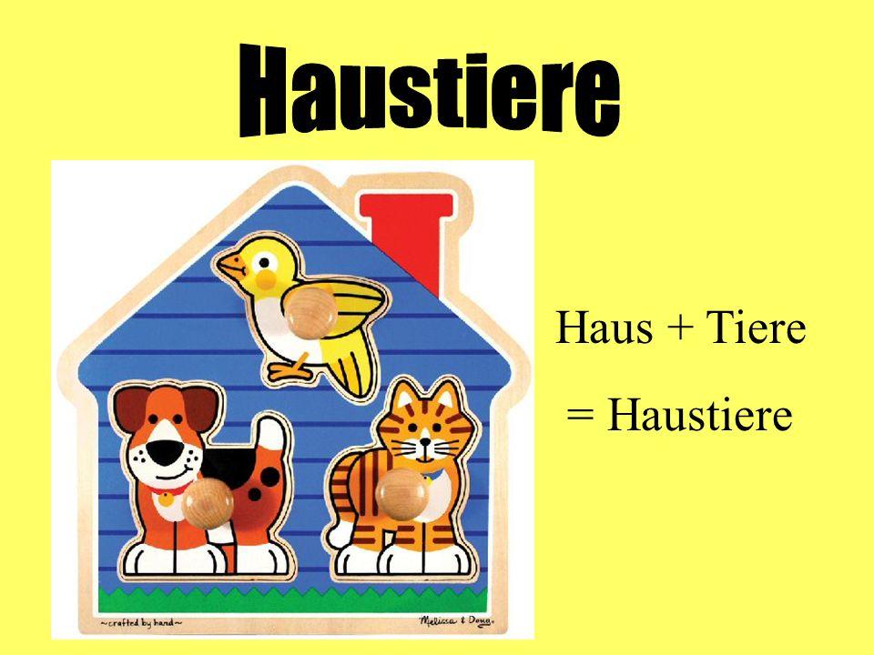 Haus + Tiere = Haustiere