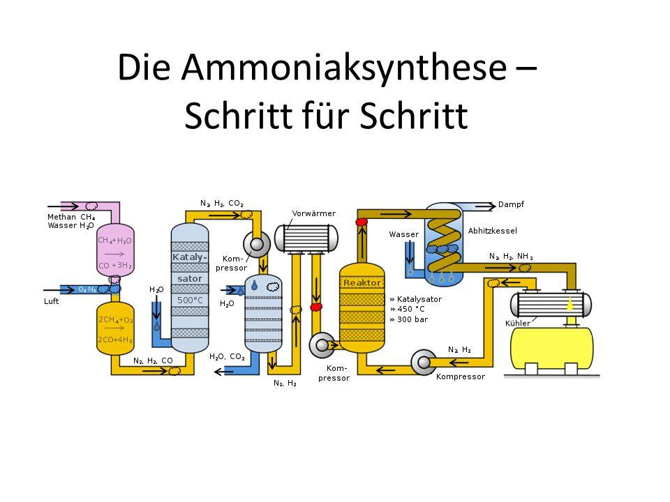 Die Ammoniaksynthese – Schritt für Schritt