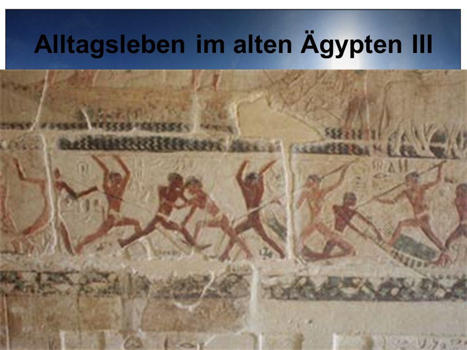 Alltagsleben im alten Ägypten III Jagd und Sport: - Alle Sportarten, die Kräftemessen bedeuteten waren sehr beliebt Ringen, Stockfechten, Schwimmen -