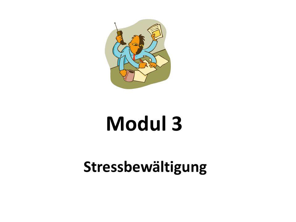 Modul 3 Stressbewältigung