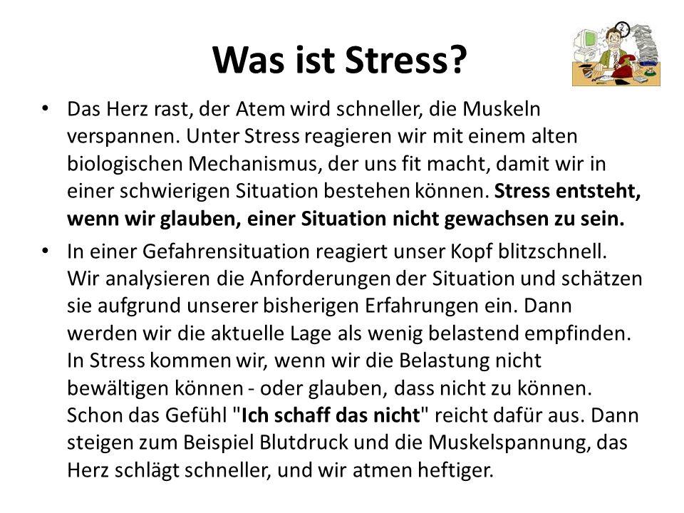 Was ist Stress? Das Herz rast, der Atem wird schneller, die Muskeln verspannen. Unter Stress reagieren wir mit einem alten biologischen Mechanismus, d