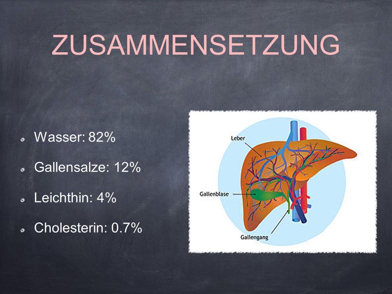 ZUSAMMENSETZUNG Wasser: 82% Gallensalze: 12% Leichthin: 4% Cholesterin: 0.7%