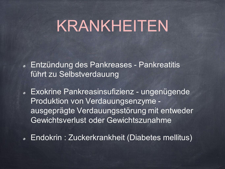 KRANKHEITEN Entzündung des Pankreases - Pankreatitis führt zu Selbstverdauung Exokrine Pankreasinsufizienz - ungenügende Produktion von Verdauungsenzy