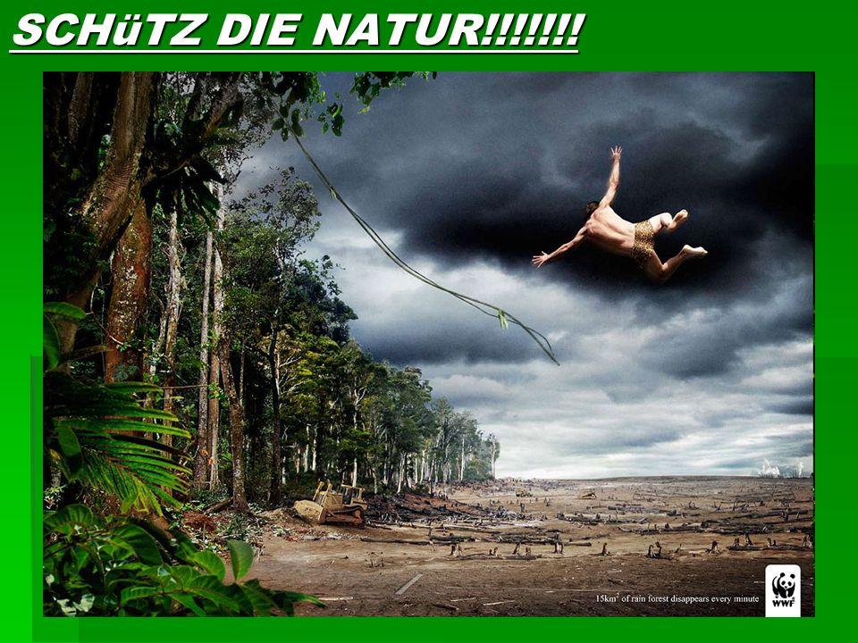 WWF WWF Der WWF, der World Wide Fund For Nature, ist eine der größten internationalen Naturschutzorganisationen der Welt. Er wurde 1961 als World Wild
