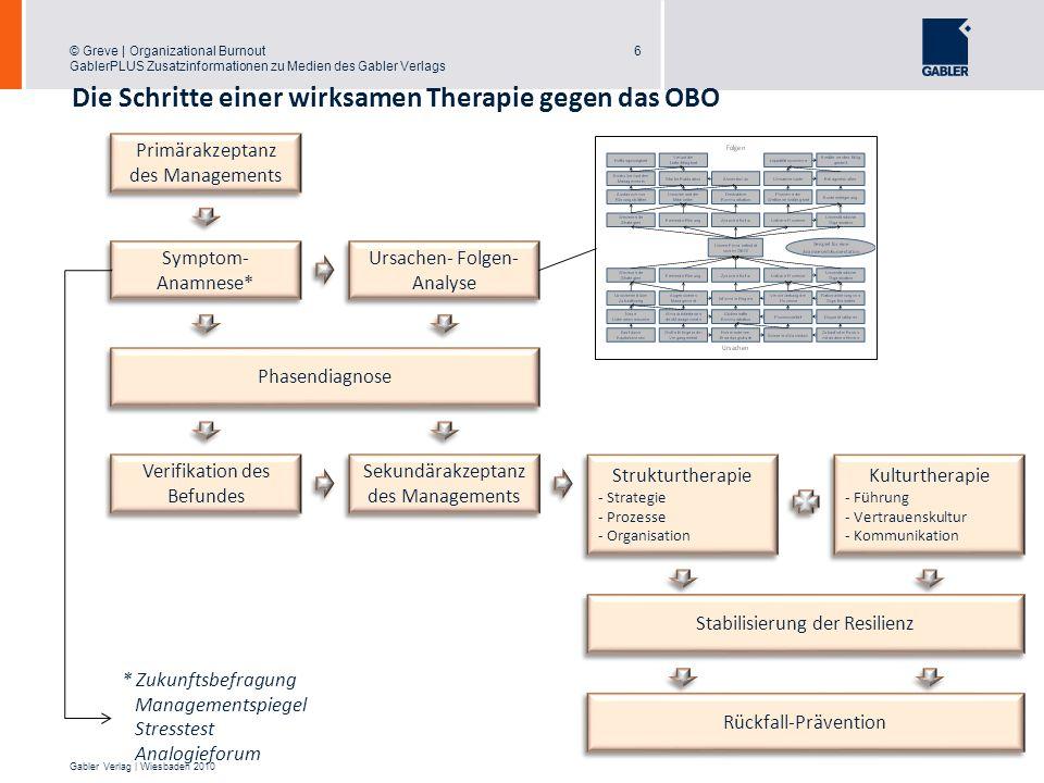 © Greve | Organizational Burnout GablerPLUS Zusatzinformationen zu Medien des Gabler Verlags 7 Gabler Verlag | Wiesbaden 2010 Therapiesetting und Therapieprogramme 7