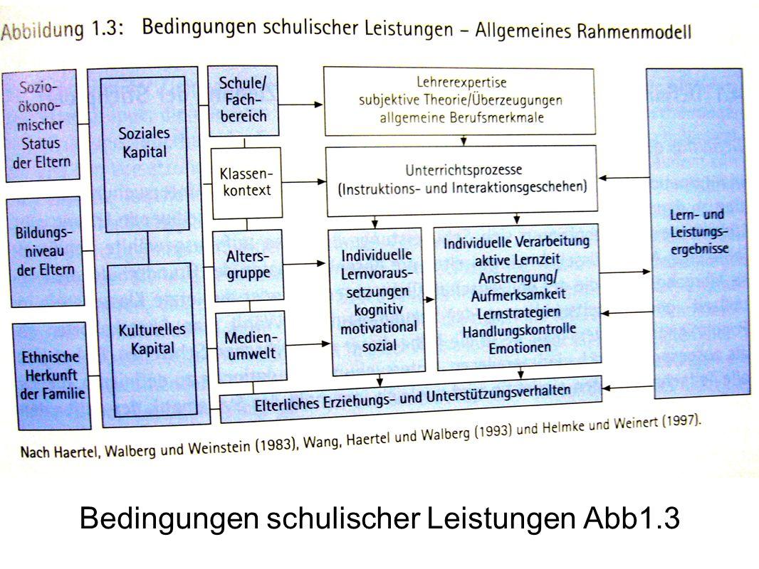 Bedingungen schulischer Leistungen Abb1.3