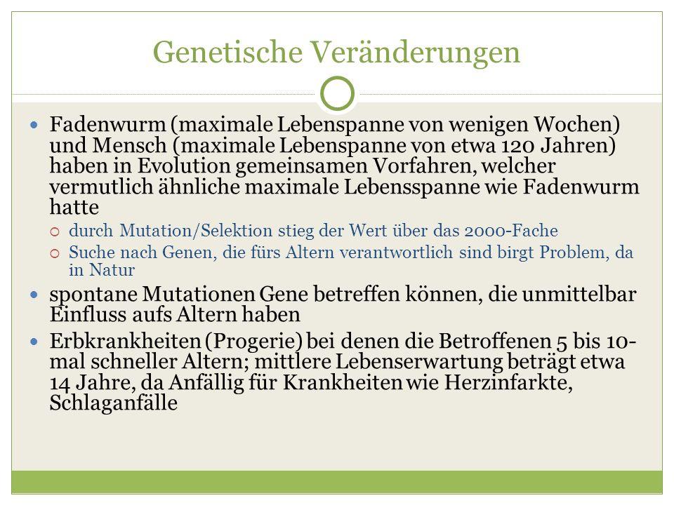 Fadenwurm (maximale Lebenspanne von wenigen Wochen) und Mensch (maximale Lebenspanne von etwa 120 Jahren) haben in Evolution gemeinsamen Vorfahren, we