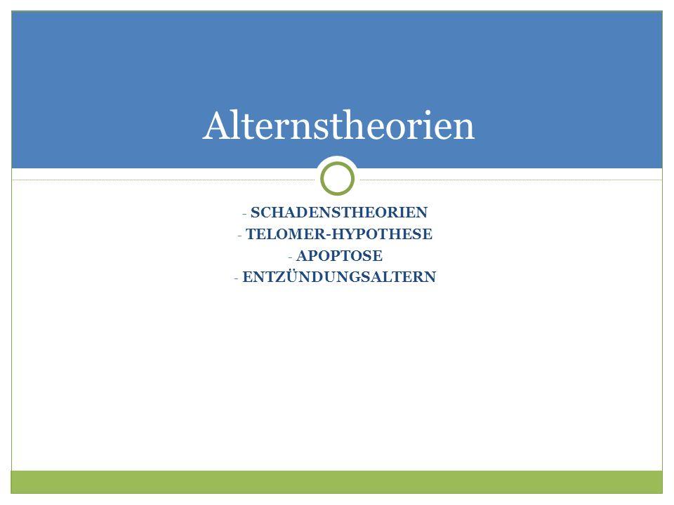 - SCHADENSTHEORIEN - TELOMER-HYPOTHESE - APOPTOSE - ENTZÜNDUNGSALTERN Alternstheorien