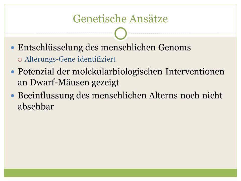 Genetische Ansätze Entschlüsselung des menschlichen Genoms Alterungs-Gene identifiziert Potenzial der molekularbiologischen Interventionen an Dwarf-Mä