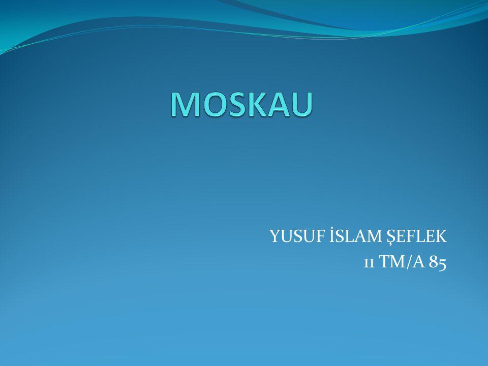YUSUF İSLAM ŞEFLEK 11 TM/A 85