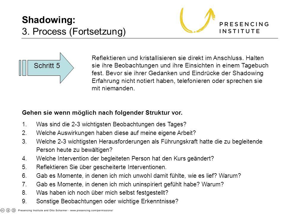 Shadowing: 3. Process (Fortsetzung) Reflektieren und kristallisieren sie direkt im Anschluss. Halten sie ihre Beobachtungen und ihre Einsichten in ein