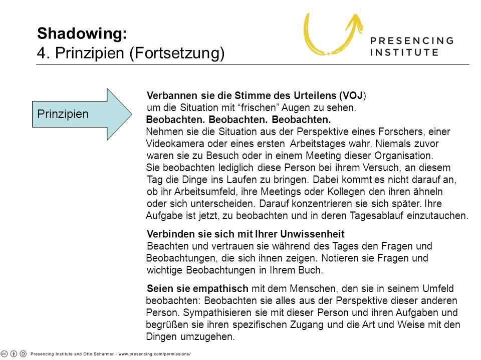 Shadowing: 4. Prinzipien (Fortsetzung) Prinzipien Verbannen sie die Stimme des Urteilens (VOJ) um die Situation mit frischen Augen zu sehen. Beobachte